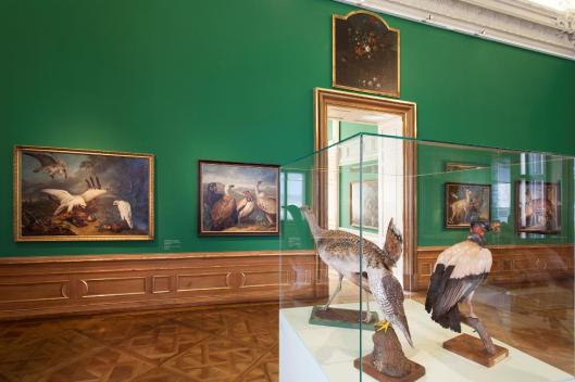 Prince Eugene of Savoy and His Menagerie exhibition view Belvedere Vienna