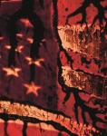 William E. Jones America, Hail Satan 2015 video