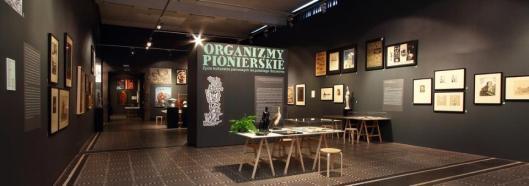 Organizmy pionierskie. Życie kulturalne pierwszych lat polskiego Szczecina widok wystawy