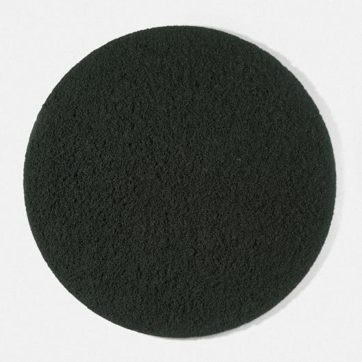 Damien Hirst Black Sun 2004 priv collection
