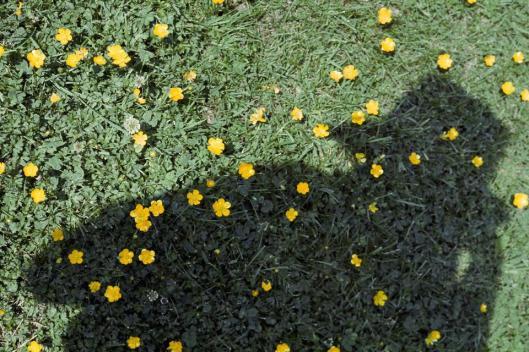 Vivian Maier Self-Portrait 1975