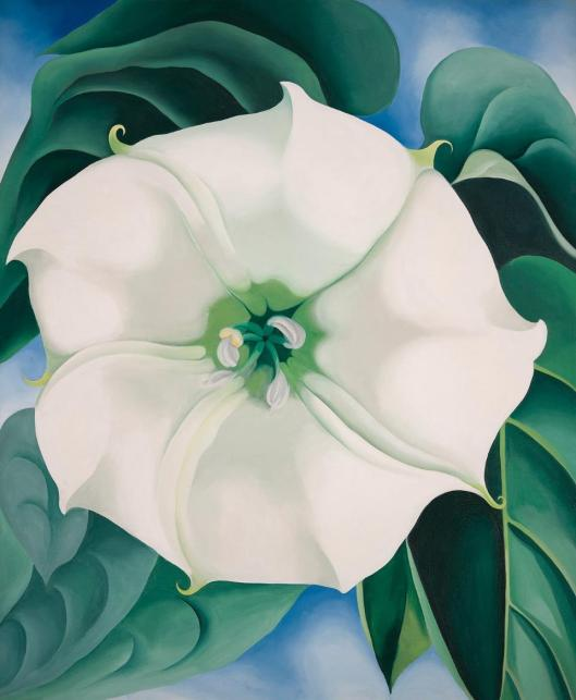 georgia-okeeffe-jimson-weed-white-flower-no-1-1932-crystal-bridges-museum-of-american-art-arkansas