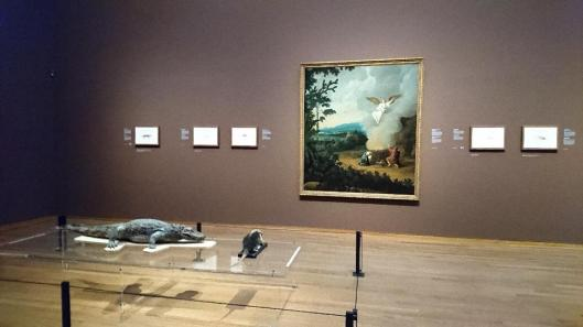 frans-post-animals-in-brazil-exhibition-view-rijksmuseum-amsterdam-artdone