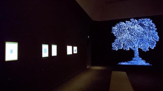 hercules-segers-exhibition-view-rijksmuseum-amsterdam-artdone