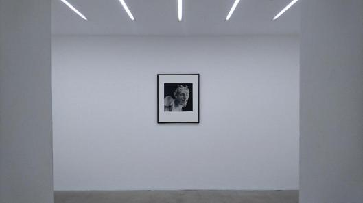 teller-on-mapplethorpe-exhibition-view-alison-jacques-gallery-london-artdone