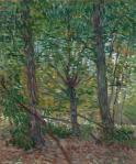 vincent-van-gogh-trees-1887-vgm-amsterdam